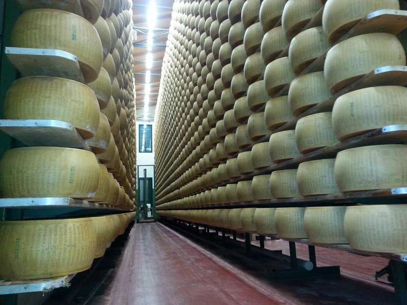 Dairy plant for Parmesan cheese production