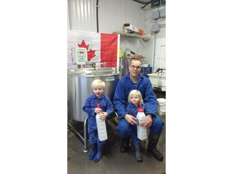 professional milk pasteurizer for calves - canada