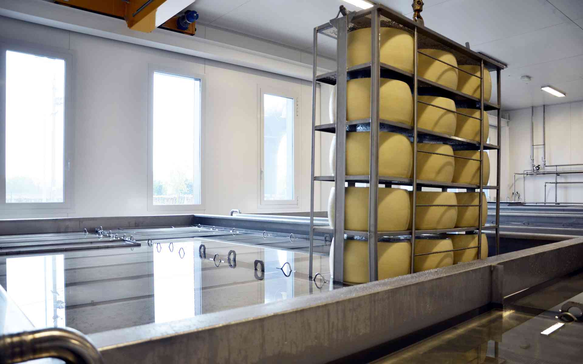 Equipment for Dairies and Mini dairies